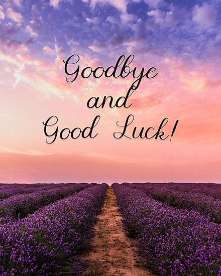 farewell card lavender fields goodbye good luck