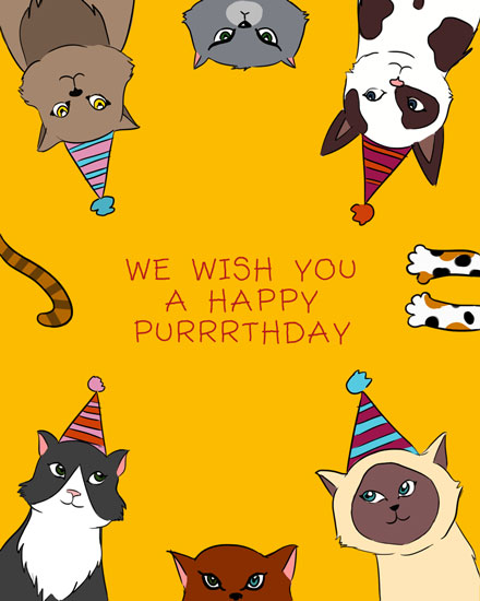 happy birthday card cats wishing happy purrrthday pun