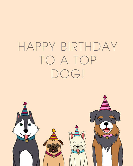 happy birthday card top dog greetings