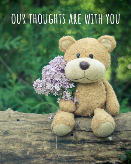 sympathy card teddy bear flowers